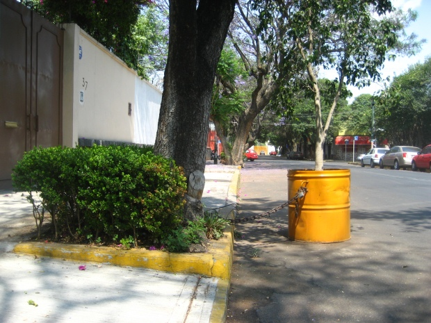 Modelo ecológico. Imagen: Rodrigo Díaz