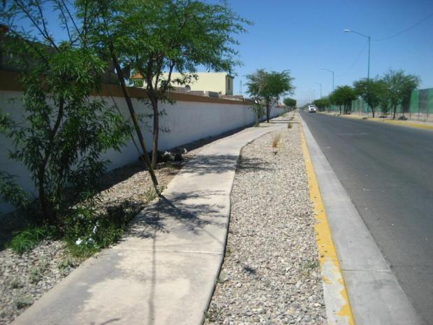 Curva Mexicali