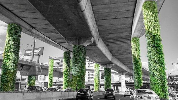 """Imagen: change.org """"Vía Verde. Transformemos las columnas del segundo piso en jardines verticales"""""""
